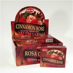 HEM Cinnamon Clove cone