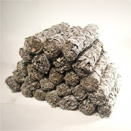 "Case of 6"" California White Sage(200pcs)"