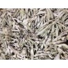 California White Sage Clusters 1LB