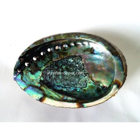 """Abalone Shell - 5"""""""