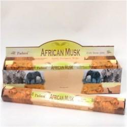 TUL001B African Musk