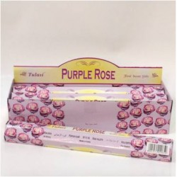TUL019B Purple Rose