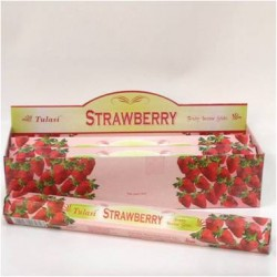 TUL028B Strawberry