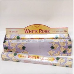 TUL030B White Rose