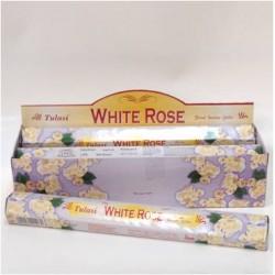 TUL030B White Rose