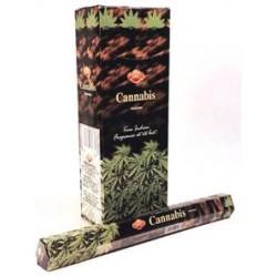 SAC011B Cannabis