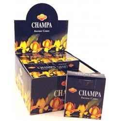 SAC Champa cones