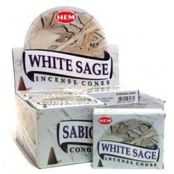 HEM021C White Sage