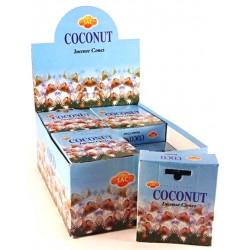 SAC Coconut cones