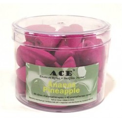 ACE Back Flow Pineapple