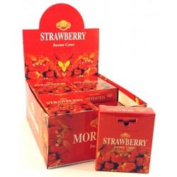 SAC Strawberry cones