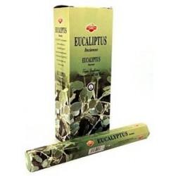 SAC028B Eucalyptus
