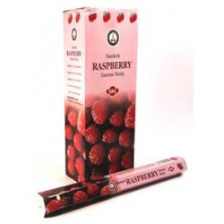 SAC Raspberry 20 sticks